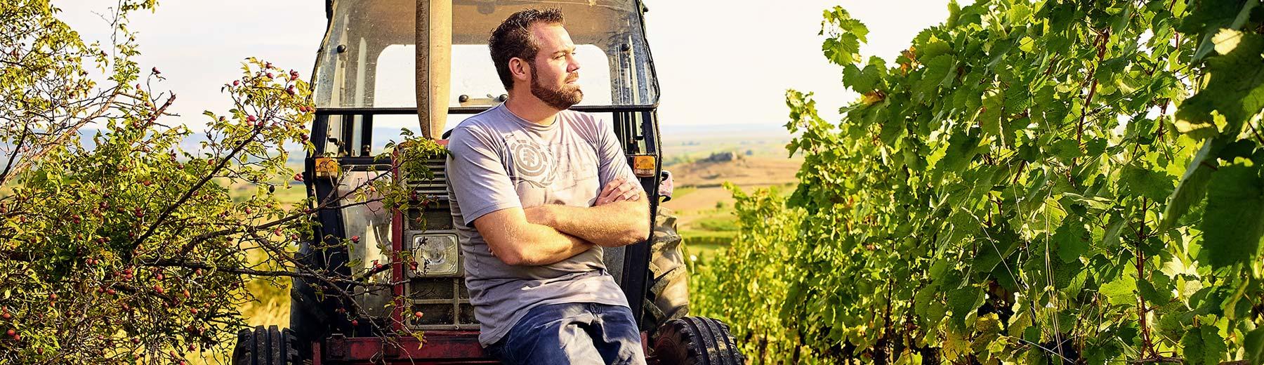 Weingut Martin Reinfeld